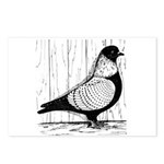 Starling Pigeon Silver Postcards (Package of 8)