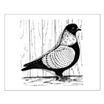 Starling Pigeon Silver Small Poster