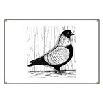 Starling Pigeon Silver Banner