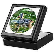 Mallard Duck - Keepsake Box