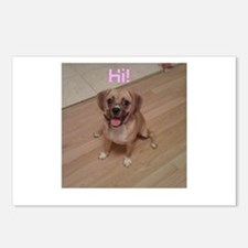Unique Puggle Postcards (Package of 8)