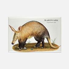 Aardvark Rectangle Magnet