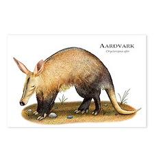 Aardvark Postcards (Package of 8)