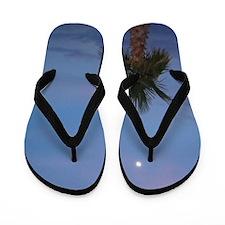 Tropical Twilight Flip Flops