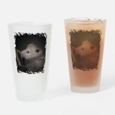 Sleepy Possum Drinking Glass