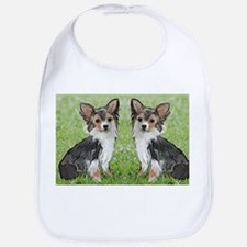 Long Coated chihuahua Bib