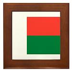 Madagascar Framed Tile