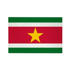 Suriname Rectangle Magnet (100 pack)