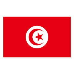 Tunisia Decal