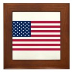 United States of America Framed Tile