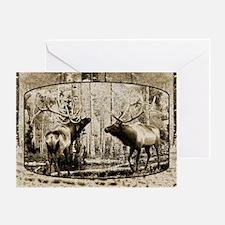 Bull elk face off Greeting Card