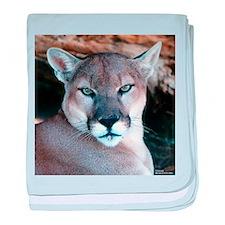 Cougar baby blanket