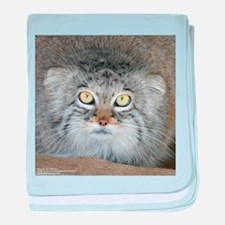 Pallas' Cat baby blanket