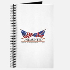 Cute Washington d.c flag Journal