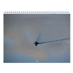 Swimming In The Sky Camano Island Wall Calendar