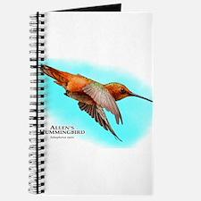 Allen's Hummingbird Journal