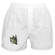 Wolpertinger Boxer Shorts
