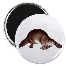 Platypus Magnet