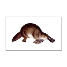 Platypus Car Magnet 20 x 12