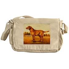 Chesapeake Bay Retriever Messenger Bag