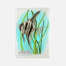 Altum Angelfish Rectangle Magnet