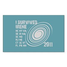 I Survived Irene 2011 Decal