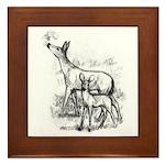 Deer Family Framed Tile