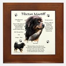 Tibetan 1 Framed Tile