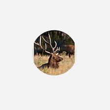 Funny Elk Mini Button