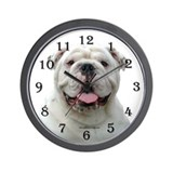 Bulldogs Basic Clocks