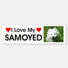 I Love My Samoyed Bumper Bumper Sticker