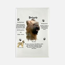 Briard 1 Rectangle Magnet
