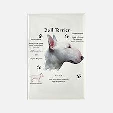 Bull Terrier 1 Rectangle Magnet