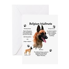 Malinois 1 Greeting Cards (Pk of 10)