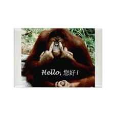 Chinese Funny Ape Rectangle Magnet