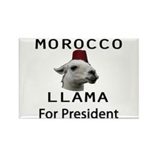 Morocco Llama For President Rectangle Magnet