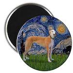 Starry / Greyhound (f) 2.25