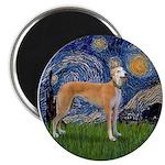 Starry / Greyhound (f) Magnet