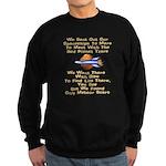 Mars Probe Limerick Sweatshirt (dark)