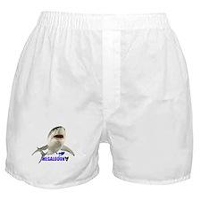 Megalodon Boxer Shorts