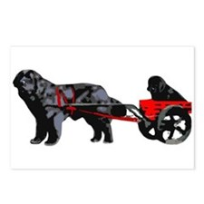 Newf Puppy in Draft Cart Postcards (Package of 8)