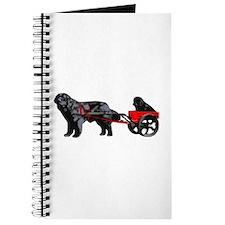 Newf Puppy in Draft Cart Journal