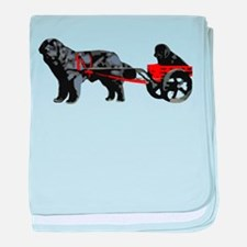 Newf Puppy in Draft Cart baby blanket