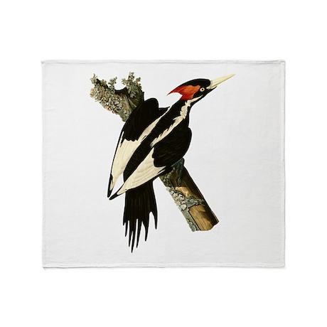 Ivory-Billed Woodpecker Throw Blanket