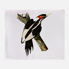 Ivory-Billed Woodpecker Throw Blanket