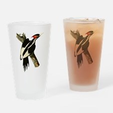Ivory-Billed Woodpecker Drinking Glass