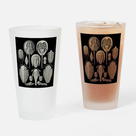 Trilobite Drinking Glass