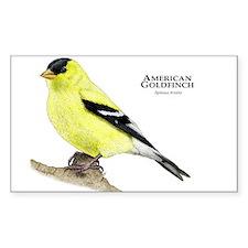 American Goldfinch Bumper Stickers