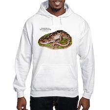 Arboreal Salamander Hoodie