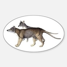 Thylacine Decal